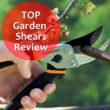 TOP Garden Shears review