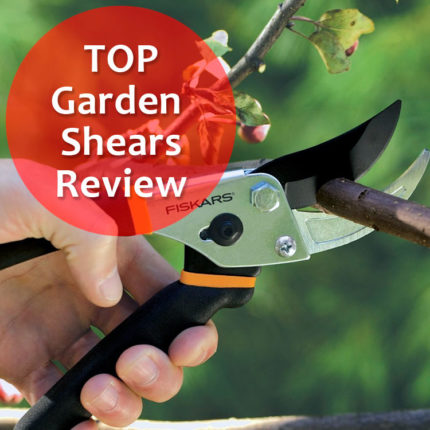 TOP Garden Shears review